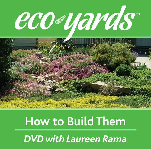 Eco-Yards: How To Build Them (DVD)